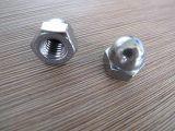 2016 Hot Sale Hex Domed Cap Nuts Brass / Copper M16 DIN1587 avec une bonne qualité