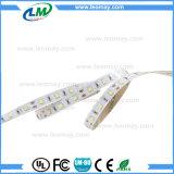 Les bandes de LED SMD3535 Nouveau type de bonne qualité