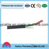 Shanghai 2mm, 4mm Flexible Wire Electric Copper Flat Wire