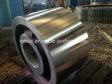Support Roller Used dans Rotary Kiln et Rotary Dryer