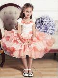 夏の女の子のパーティー向きのドレスに着せている美しい子供