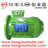 0.75kw 4pole Aluminiummotor der Induktions-Ie3 (802-4P-0.75kw)