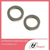 Forte magnete permanente eccellente del neodimio dell'anello diplomato ISO/Ts16949