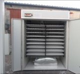 Incubateur bon marché complètement automatique de poulet d'oeufs des avoirs 4000