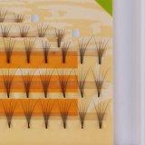 Lili 아름다움 양 채찍질 돛을%s 개별적인 채찍질 매듭 자유로운 다발