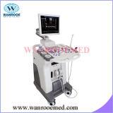 Usc80plus Ultraschall-Maschinen-Arbeitsplatz für menschlichen Body& Tierarzt
