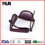 Costume da alta qualidade seu próprio dobramento unisex dos óculos de sol do logotipo (YJ-AQ0287)