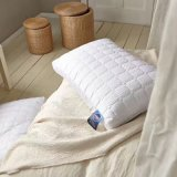 Очень дешевое изготовление совершенная подушка для прибрежного