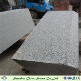 화강암 G654 회색에게 화강암 둘러싸거나 도와 또는 층계 단계