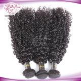 自然な未加工極度の巻き毛のインドの毛の卸売