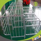 Stalla di gestazione galvanizzata Caldo-Anca della strumentazione del maiale/stalla specifica da vendere