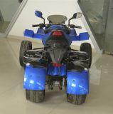 China fabricante 250cc camino legal del coche de playa (JY-250B)