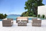 Mobilia esterna del giardino di conversazione del giardino stabilito classico del sofà