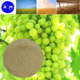Índice do fertilizante 52% do pó do ácido aminado