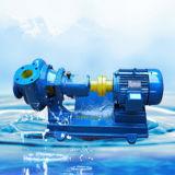Pw 하수 오물 펌프