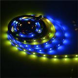 2812 크리스마스 훈장을%s IC 5050 LED 지구를 가진 어드레스로 불러낼 수 있는 LED 지구
