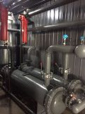 Secador do ar da alta qualidade da remoção do sopro