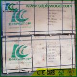 A película grande do tamanho 1250X2500X18/21mm enfrentou a madeira compensada para Europa