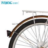 OEM/ODM 제조자 도시 자전거, 사용된 숙녀 자전거