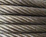 PVC 철사 밧줄 1*7 철강선 밧줄