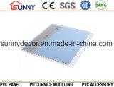 Comitato di parete di buona qualità Soffitto-PVC del Comitato-PVC del PVC per la decorazione
