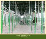 Molde verde que descasca cedo o molde do aço da laje