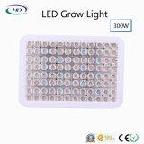 Volles Spektrum 300W LED wachsen für Innenbearbeitung hell