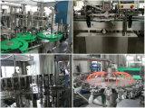 Automatisierte Frucht-Produktions-Pflanze für Aprikose, Ananas, Wolfberry