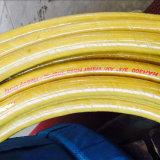 Schlauch-Export zu Philippinen 300 FT-Wasser-Gebrauch-Textilgummi-Schlauch
