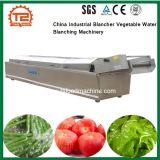La Chine Industrial Blancher Légumes blancheur de l'eau de la machinerie