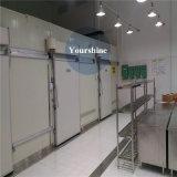 Medizinischer Refrigeratory Kühlraum-Gefriermaschine-Speicher