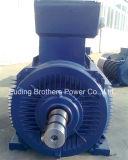6000V三相AC電動機400モーター