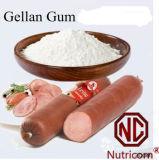 Gellan 실리콘껌 CAS No. 71010-52-1