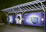 Materiaal van het Broodje van de Banner van pvc van Indoor& het Openlucht In het groot Flex voor Digitale Druk