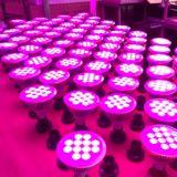 최대 Popuplar 12W Hydroponic LED는 가벼운 E27 램프를 증가한다