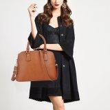Signora calda Handbag (WDL0276) di modo del progettista di vendita di alta qualità classica