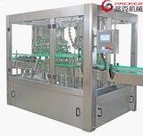 De automatische Verse Bottelende Machines van het Sap Plasticbottle en van de Drank