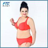 Bikini a due pezzi delle grandi di formato signore dello Swimwear in azione