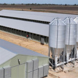 Дом слоя цыпленка стальной структуры для сбывания в быть фермером Филиппиныы