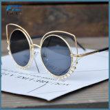 [كت] نظّارات شمس معدن إطار نظّارات شمس لأنّ نساء
