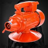 電気具体的なバイブレーターを保存する手持ち型の電気具体的なバイブレーター/Energy