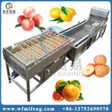 Промышленные фрукты овощные пузырьки воздуха сушки для очистки машины / купол стиральной машины