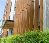 木製のプラスチック合成の装飾的な木ずり