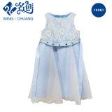 熱い販売のフラワー・ガールの子供は女の子のためのパーティー向きのドレスに着せる