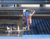 Tagliatrice di piastra metallica del laser