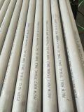 Naadloze Buis 304 van het roestvrij staal & 304L