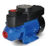 Eau chaude et froide périphérique automatique de la pompe à eau/QB60