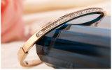 Edelstahl-Armband-Form-Schmucksache-Geschenk