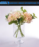창조적인 디자인 끈 훈장을%s 가진 투명한 둥근 유리제 꽃 화병