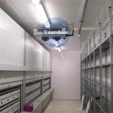 Conservazione frigorifera calda di controllo di temperatura di vendita per frutta (ciliegia, banana…)